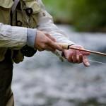 釣った魚を料理して食べられる宿 淡路島